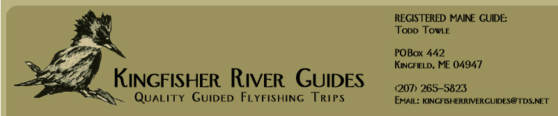 Kingfisher River Guides, Fly Fishing in Maine