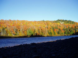 Fall foliage in The Forks, Maine.